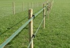 Albany Electric fencing 4