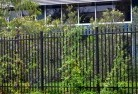 Albany Security fencing 19