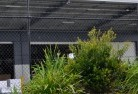 Albany Wire fencing 20