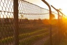 Albany Wire fencing 6