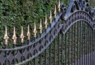 Albany Wrought iron fencing 11